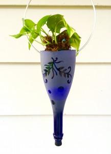 sandblasting succulents